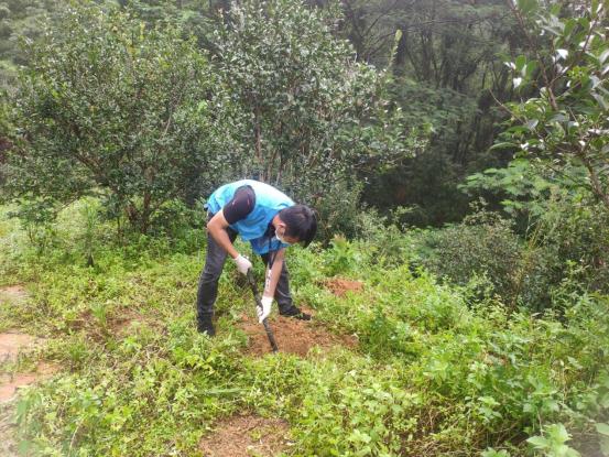 茂南区自然资源局开展林产品质量安全监测378.png